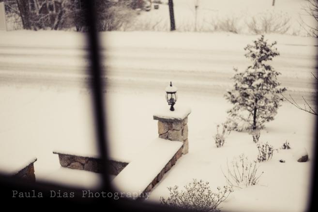 snowstormnemo-3-2
